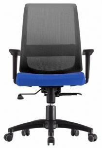 ACCOUDOIRS REGLABLES EN HAUTE - Siège de bureau ergonomique Duocolor