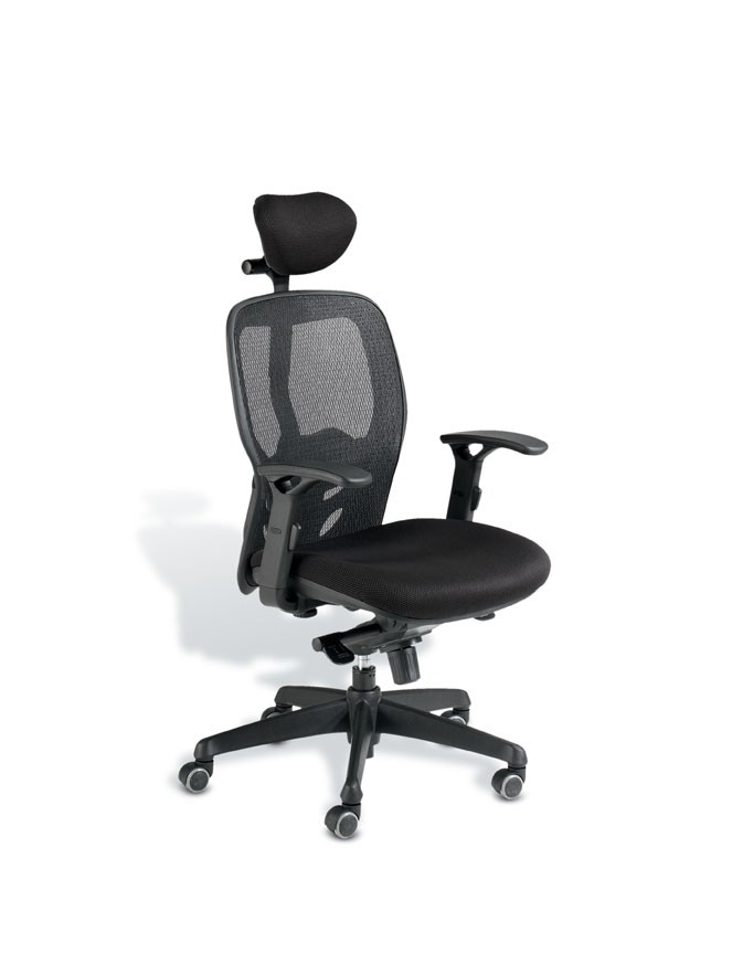fauteuil de bureau ergonomique tempo achat si ges ergonomiques 379 00. Black Bedroom Furniture Sets. Home Design Ideas
