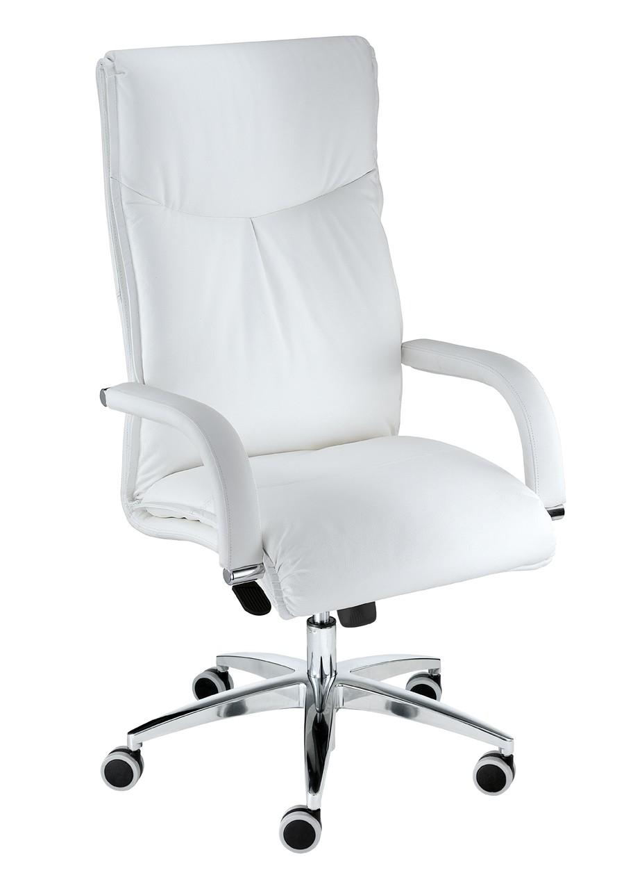 fauteuil de direction sally achat fauteuil bureau cuir 0 00. Black Bedroom Furniture Sets. Home Design Ideas