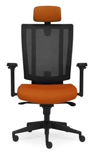 Fauteuil de bureau ergonomique ergoflex - Fauteuils ergonomiques bureau ...
